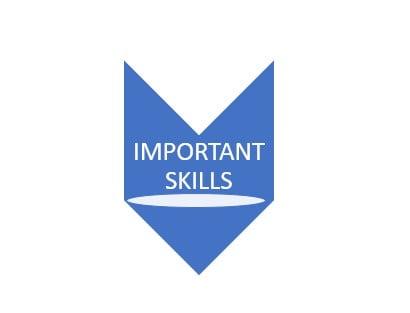 important-skills